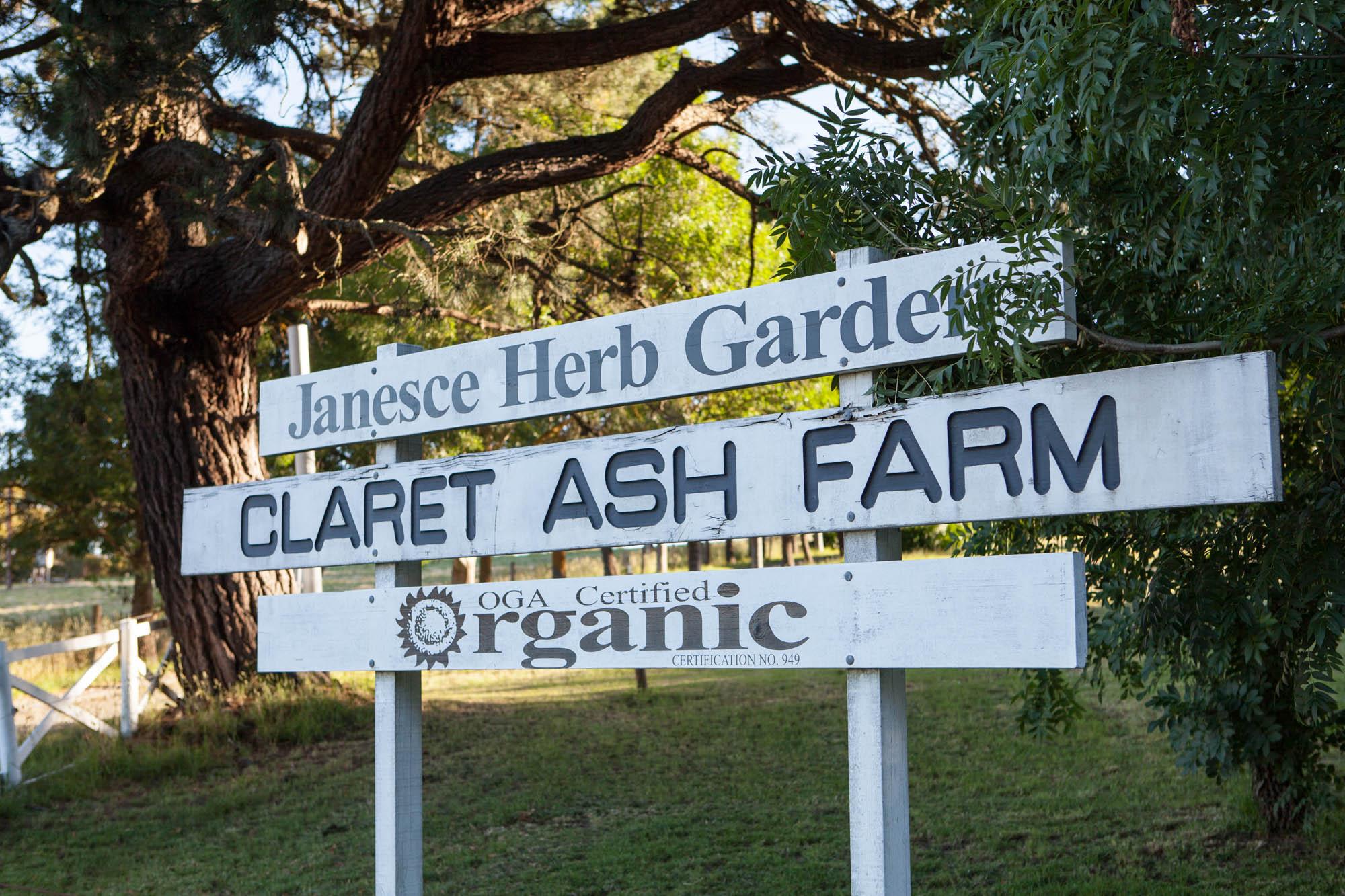 Janesce | Claret Ash Farm